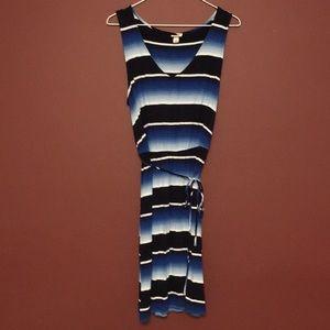 Merona Bold Stripe Dress